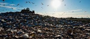 garbage-heap